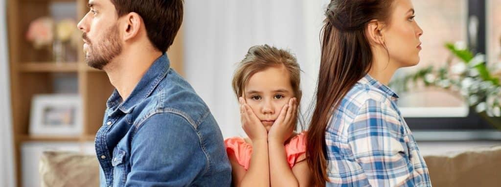 Can a parent litter mediation?